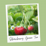 Cheerful Strawberry Green